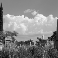 Mono 1st - Oakland Cemetery by Jim Harrison