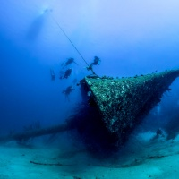 Color 3rd – Hilma Hooker Wreck by Janerio Morgan