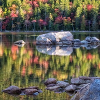 Color HM & Members Choice – Fall in Acadia by Darryl Neill