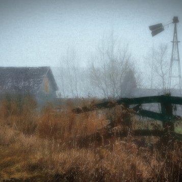 Farm in the Fog by Stan Greenberg