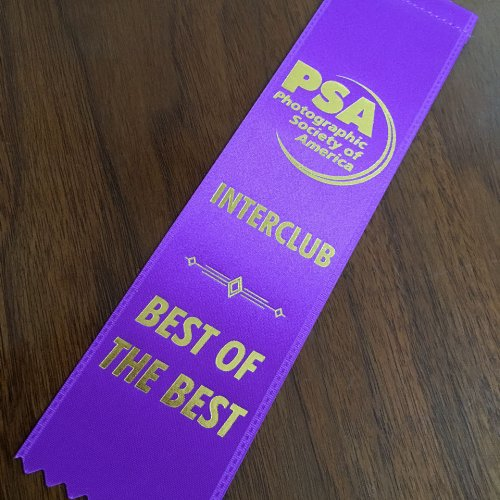 "Stan's ""Best of the Best"" Ribbon for"