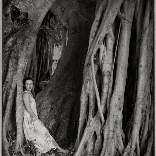 Lena in the Tree by Marc McElhaney