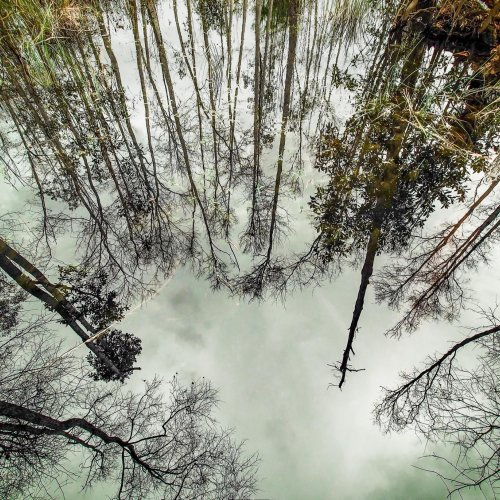 Looking Down by Janerio Morgan