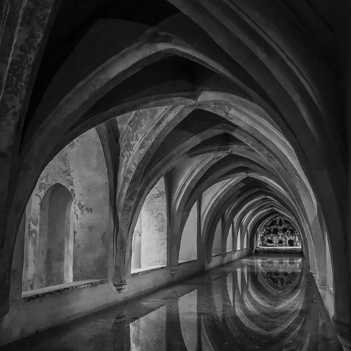 Alcazar Reflecting Pool by Chris Handley