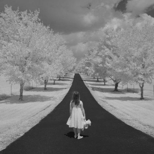 Hannah's Dream by Enrique Duprat