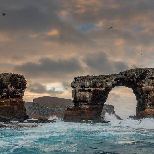 Darwin's Arch - Galopgos Islands by Janerio Morgan