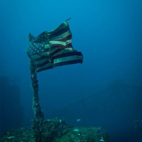 Spegol Grove - Key Largo, FL by Janerio Morgan