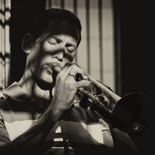 Jazz In The Shadows by Marc McElhaney