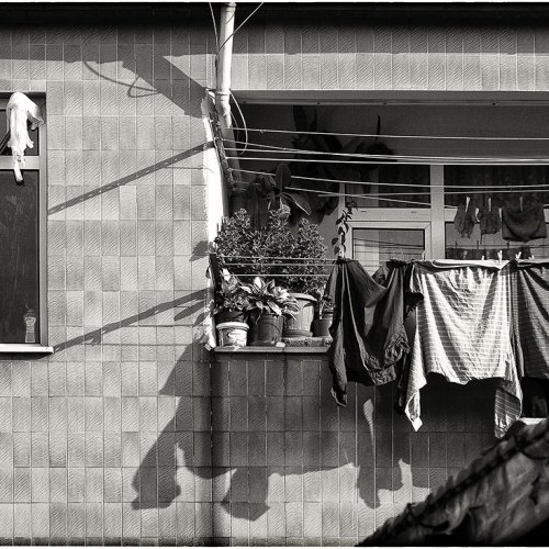 Wash Day by Marc McElhaney
