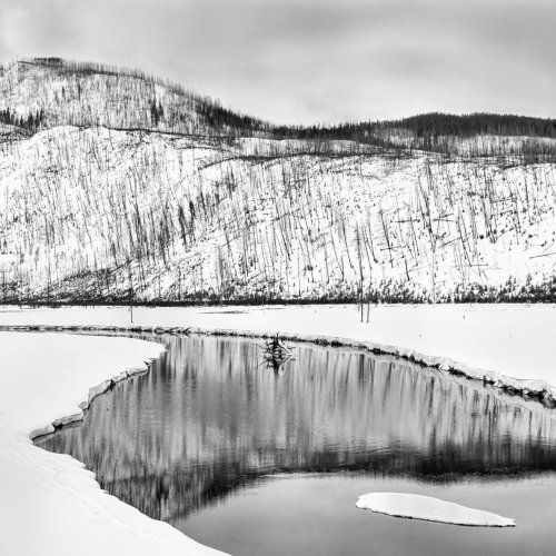 Yellowstone Reflection by Stan Greenberg