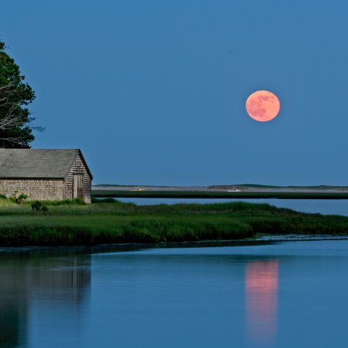 Full Moon Rising, Salt Pond Bay, Cape Cod by Steve Director