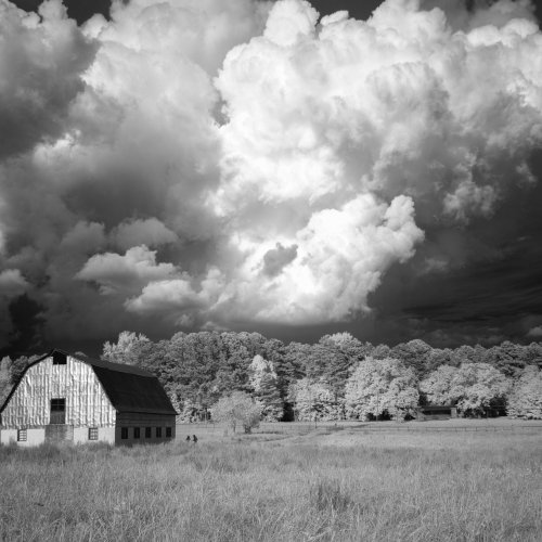 Approaching Storm by Janerio Morgan