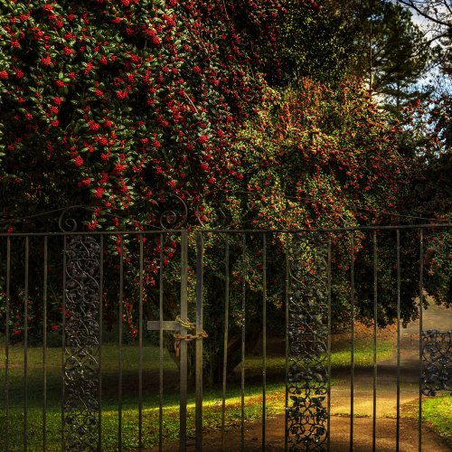 Locked Out of Eden by Darryl Neill