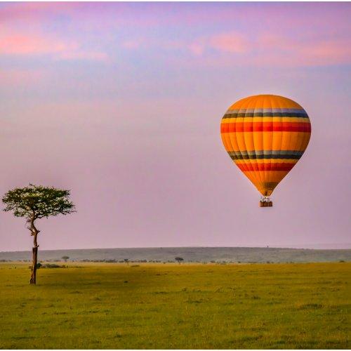 Digital Members Choice - Morning Flight Over the Masai Mara by Steve Director
