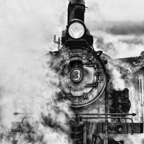 Mono 2nd - Last of the Climax Steam Engines by jenn cardinell