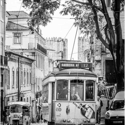 Mono hm - Lisbon Streetcar by Steve Director