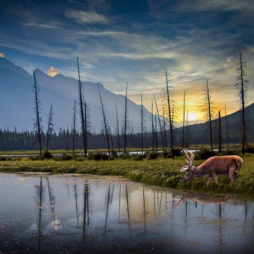Digital 2nd - Vermilion Lake(composite) by Stan Greenberg