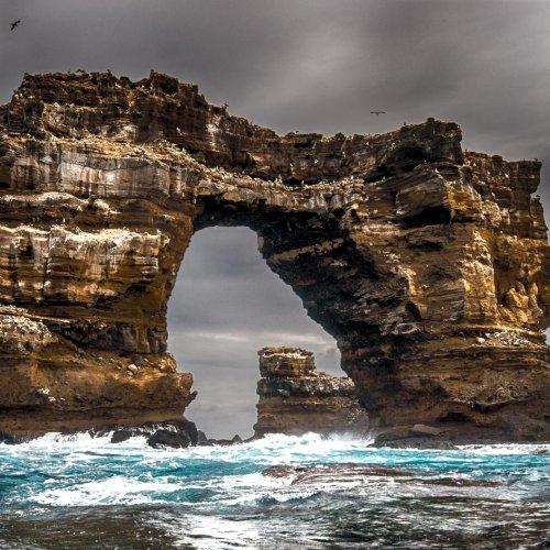 Darwin_s Arch by Janerio Morgan
