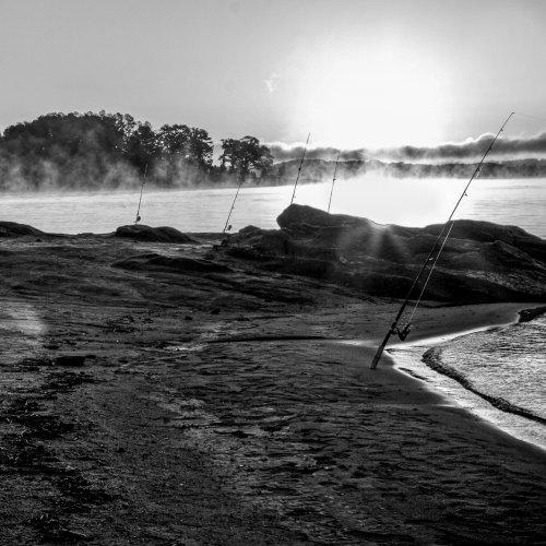 Mono HM-Catching the Mist by Rohit Kamboj