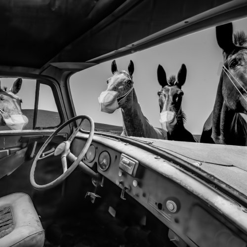 Mono 1st_Welcome to Rural America_composite by Mike Shaefer