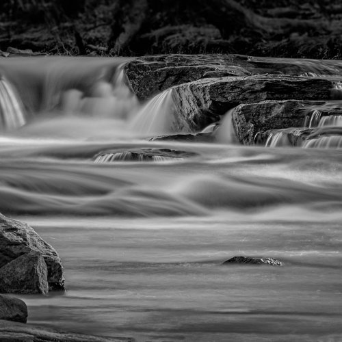 Mono 3rd_Taming the Rapids by Steve Director