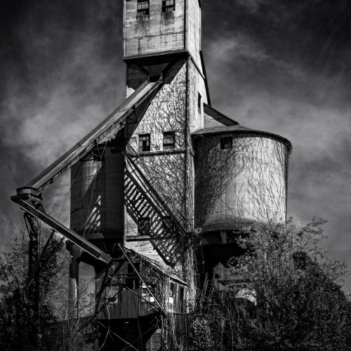 Mono 2nd - Abandoned (Composite) by Steve Director