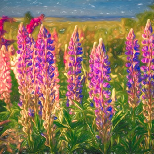 Digital HR - Lupines by Steve Director
